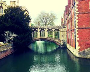 cambridge-puente